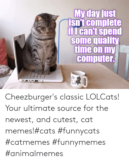 Cat Memes: Cheezburger's classic LOLCats! Your ultimate source for the newest, and cutest, cat memes!#cats #funnycats #catmemes #funnymemes #animalmemes