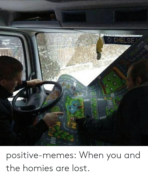 Memes, Target, and Tumblr: CHELSE positive-memes:  When you and the homies are lost.