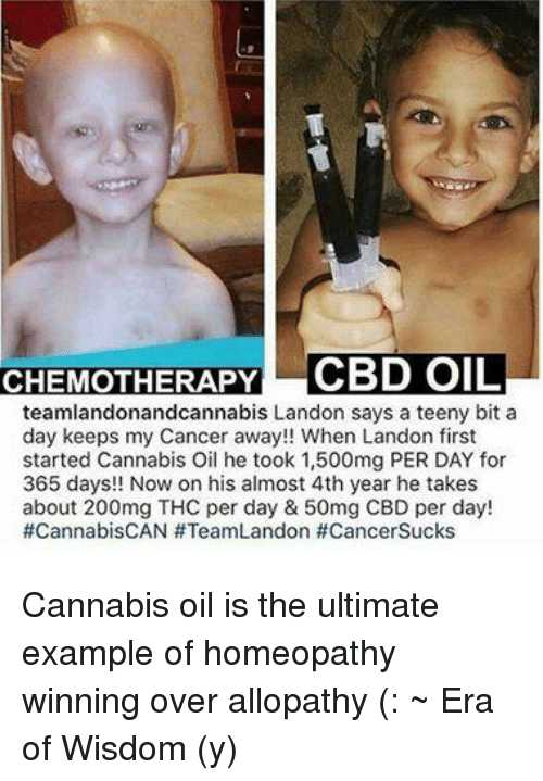 teenies: CHEMOTHERAPY CBD OIL  teamlandonandcannabis Landon says a teeny bit a  day keeps my Cancer away!! When Landon first  started Cannabis Oil he took 1,500mg PER DAY for  365 days!! Now on his almost 4th year he takes  about 200mg THC per day & 50mg CBD per day!  #Cannabis CAN #TeamLandon #Cancer Sucks Cannabis oil is the ultimate example of homeopathy winning over allopathy (: ~ Era of Wisdom (y)