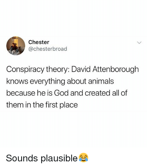 Conspiracy Theory: Chester  @chesterbroad  Conspiracy theory: David Attenborough  knows everything about animals  because he is God and created all of  them in the first place Sounds plausible😂