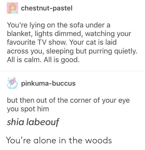 youre lying: chestnut-pastel  You're lying on the sofa under a  blanket, lights dimmed, watching your  favourite TV show. Your cat is laic  across you, sleeping but purring quietly.  All is calm. All is good.  pinkuma-buccus  but then out of the corner of your eye  you spot him  shia labeouf You're alone in the woods