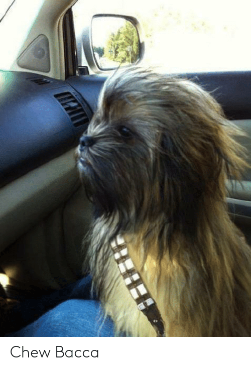 Bacca and Chew: Chew Bacca