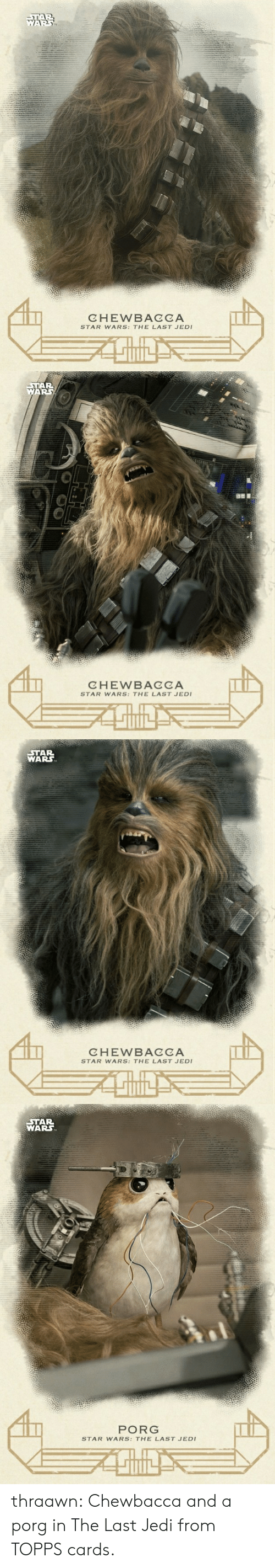 Chewbacca, Jedi, and Star Wars: CHEWBACCA  STAR WARS: THE LAST JEDI   AR  CHEWBACCA  STAR WARS: THE LAST JED   STAR  WARS  CHEWBACCA  STAR WARS: THE LAST JEDI   STAR  WARS  PORG  STAR WARS: THE LAST JEDI thraawn:  Chewbacca and a porg in The Last Jedi from TOPPS cards.