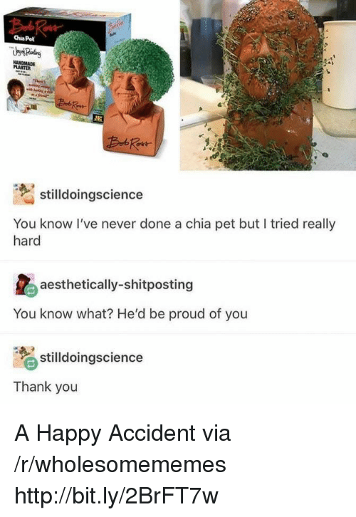 Thank You, Happy, and Http: Chia Pet  PLANTER  stilldoingscience  You know I've never done a chia pet but I tried really  hard  aesthetically-shitposting  You know what? He'd be proud of you  stilldoingscience  Thank you A Happy Accident via /r/wholesomememes http://bit.ly/2BrFT7w