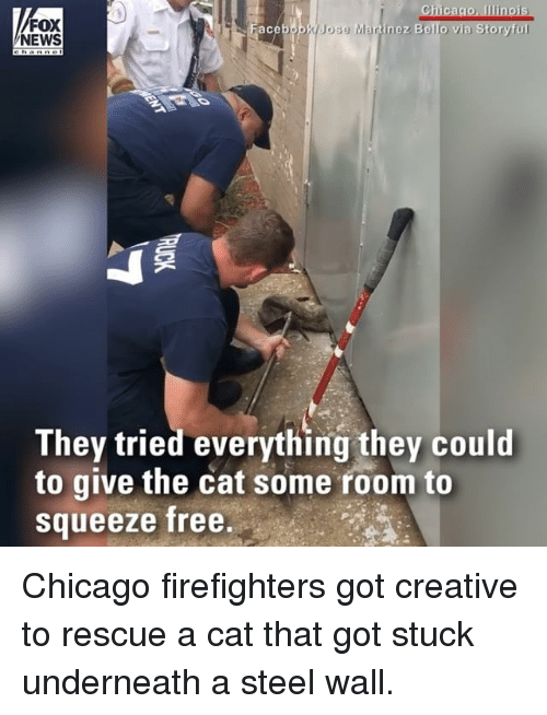 walle: Chicago, Ilinois  Jose Martinez Bello via Storyful  FOX  NEWS  ace  They tried everything they could  to give the cat some room to  Squeeze free Chicago firefighters got creative to rescue a cat that got stuck underneath a steel wall.