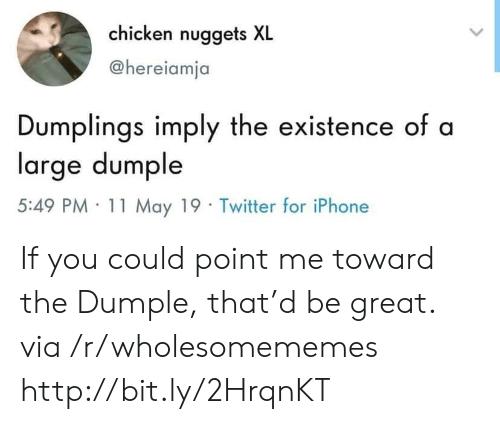Iphone, Twitter, and Chicken: chicken nuggets XL  @hereiamja  Dumplings imply the existence of a  large dumple  5:49 PM· 11 May 19 . Twitter for iPhone If you could point me toward the Dumple, that'd be great. via /r/wholesomememes http://bit.ly/2HrqnKT