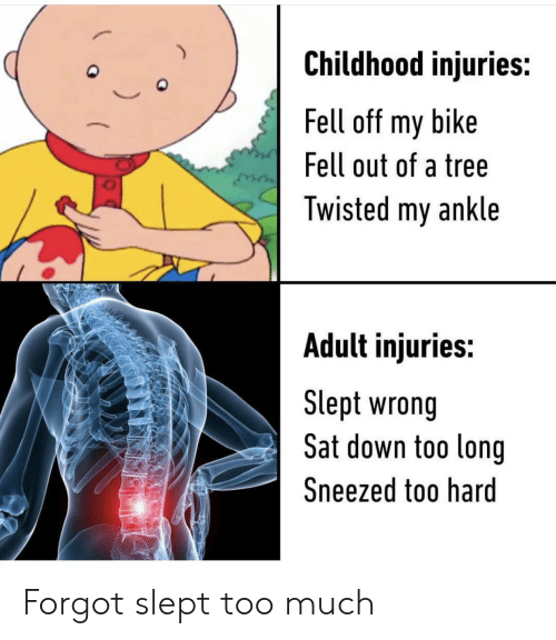 Too Much, Tree, and Bike: Childhood injuries:  Fell off my bike  Fell out of a tree  Twisted my ankle  Adult injuries:  Slept wrong  Sat down too long  Sneezed too hard Forgot slept too much