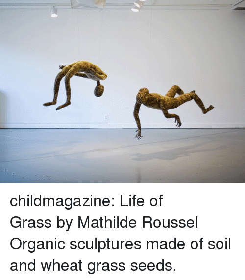 Life, Tumblr, and Blog: childmagazine: Life of GrassbyMathilde Roussel Organic sculptures made of soil and wheat grass seeds.