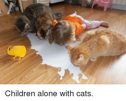Being Alone, Cats, and Children: Children alone with cats.