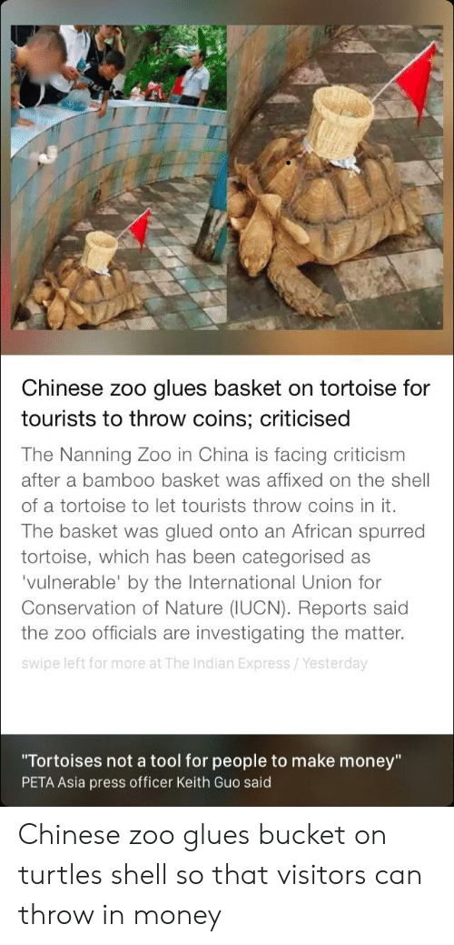 """Money, China, and Peta: Chinese zoo glues basket on tortoise for  tourists to throw coins; criticised  The Nanning Zoo in China is facing criticism  after a bamb00 basket was affixed on the shell  of a tortoise to let tourists throw coins in it.  The basket was glued onto an African spurred  tortoise, which has been categorised as  'vulnerable' by the International Union for  Conservation of Nature (IUCN). Reports said  the zoo officials are investigating the matter.  swipe left for more at The Indian Express/Yesterday  """"Tortoises not a tool for people to make money""""  PETA Asia press officer Keith Guo said Chinese zoo glues bucket on turtles shell so that visitors can throw in money"""