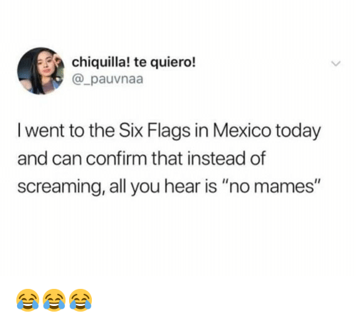 """Mames: chiquilla! te quiero!  @_pauvnaa  I went to the Six Flags in Mexico today  and can confirm that instead of  screaming, all you hear is """"no mames"""" 😂😂😂"""