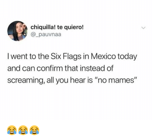 """Mames: chiquilla! te quiero!  @_pauvnaa  l went to the Six Flags in Mexico today  and can confirm that instead of  screaming, all you hear is """"no mames"""" 😂😂😂"""