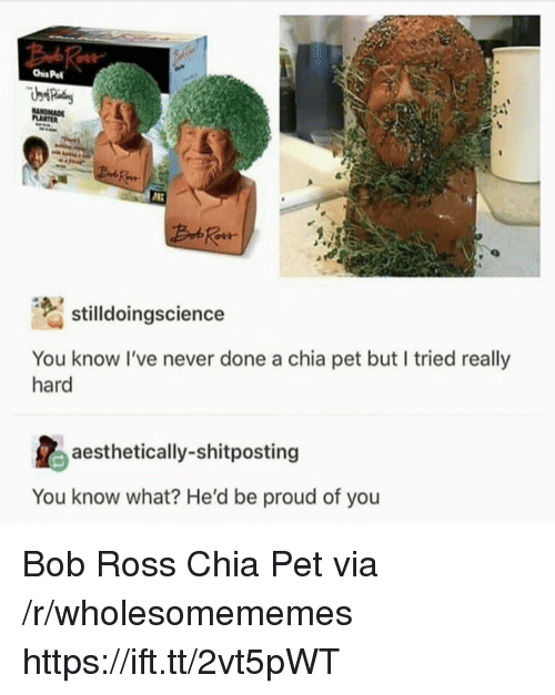 Bob Ross, Proud, and Never: Chis Pe  sildoingscience  You know I've never done a chia pet but I tried really  hard  aesthetically-shitposting  You know what? He'd be proud of you Bob Ross Chia Pet via /r/wholesomememes https://ift.tt/2vt5pWT