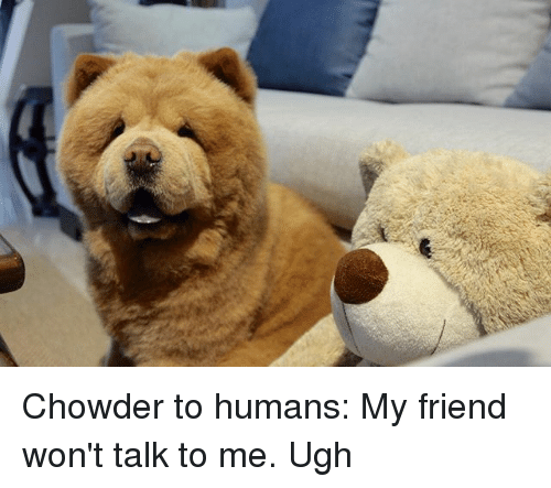 Memes, Chowder, and 🤖: Chowder to humans: My friend won't talk to me. Ugh
