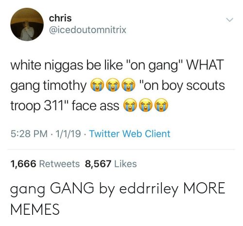 "Ass, Be Like, and Dank: chris  @icedoutomnitrix  white niggas be like ""on gang"" WHAT  gang timothy""on boy scouts  troop 311"" face ass  5:28 PM - 1/1/19 Twitter Web Client  1,666 Retweets 8,567 Likes gang GANG by eddrriley MORE MEMES"