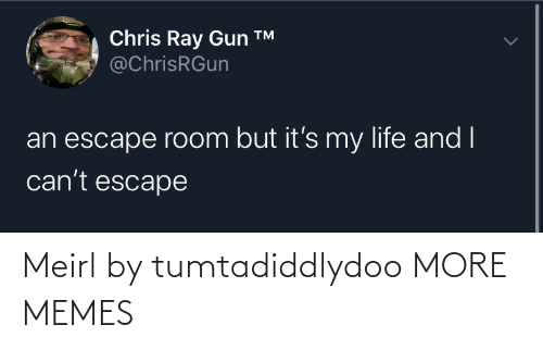 ray: Chris Ray Gun ™  @ChrisRGun  an escape room but it's my life and I  can't escape Meirl by tumtadiddlydoo MORE MEMES