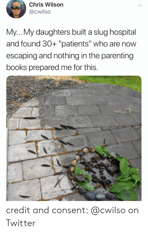 "Books, Twitter, and Hospital: Chris Wilson  @Cwilso  My... My daughters built a slug hospital  and found 30+ ""patients"" who are now  escaping and nothing in the parenting  books prepared me for this. credit and consent: @cwilso on Twitter"