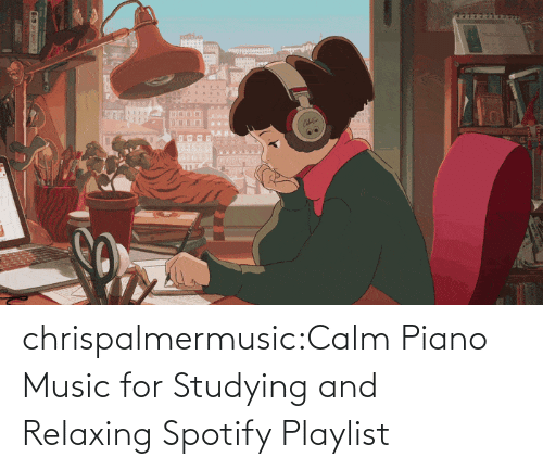 relaxing: chrispalmermusic:Calm Piano Music for Studying and Relaxing Spotify Playlist
