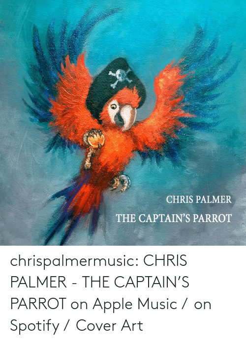 Chris: chrispalmermusic:  CHRIS PALMER - THE CAPTAIN'S PARROT on Apple Music /  on Spotify /  Cover Art