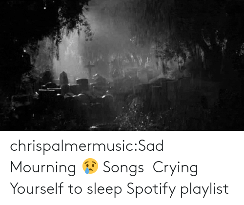 mourning: chrispalmermusic:Sad Mourning 😢 Songs  Crying Yourself to sleep Spotify playlist