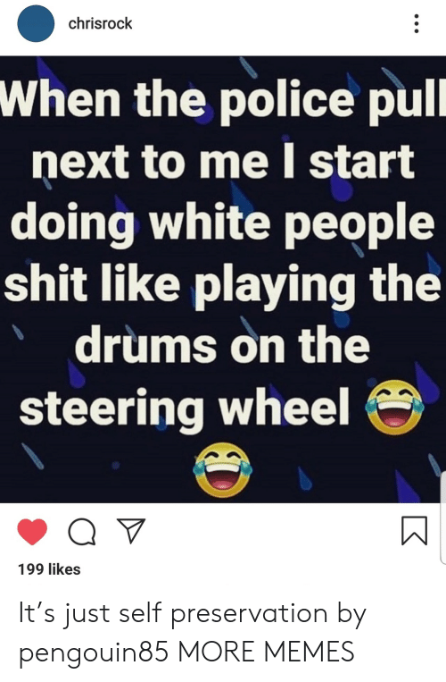 Steering: chrisrock  When the police pull  next to me I start  doing white people  shit like playing the  drums on the  steering wheel  Q V  199 likes It's just self preservation by pengouin85 MORE MEMES