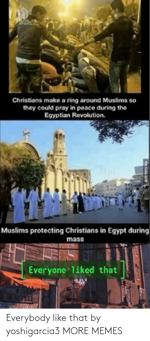 mass: Christians make a ring around Muslims so  they could pray in peace during the  Egyptian Revolution.  Muslims protecting Christians in Egypt during  mass  Everyone liked that  SGAG Everybody like that by yoshigarcia3 MORE MEMES