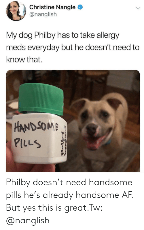 Af, Dog, and Yes: Christine Nangle  @nanglish  My dog Philby has to take allergy  meds everyday but he doesn't need to  know that.  HAND SOM  ILLS Philby doesn't need handsome pills he's already handsome AF. But yes this is great.Tw: @nanglish