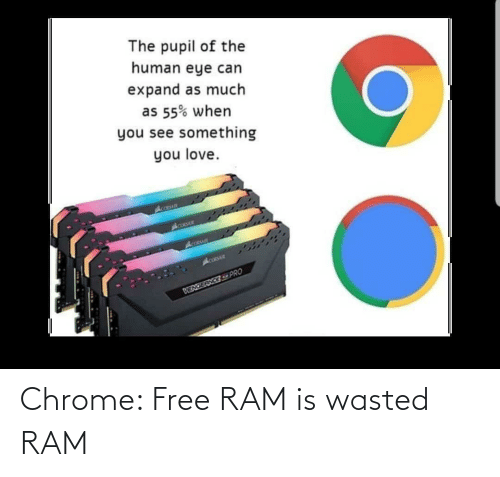 wasted: Chrome: Free RAM is wasted RAM