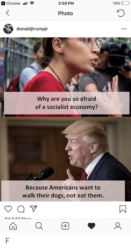 Chrome, Dogs, and Socialist: Chrome .ll  3:59 PM  14% UD,  Photo  donaldjtrumpjr  Why are you so afraid  of a socialist economy?  Because Americans want to  walk their dogs, not eat them. F