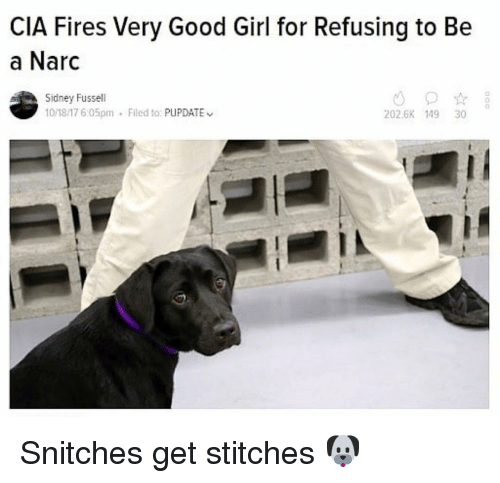 Narc: CIA Fires Very Good Girl for Refusing to Be  a Narc  Sidney Fussell  10/18/17 6:05pm  Flled to: PUPDATE  202.6K 149 30 Snitches get stitches 🐶