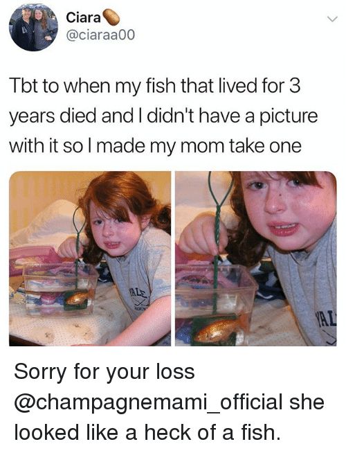 Ciara: Ciara  @ciaraa00  Tbt to when my fish that lived for 3  years died and I didn't have a picture  with it so l made my mom take one Sorry for your loss @champagnemami_official she looked like a heck of a fish.