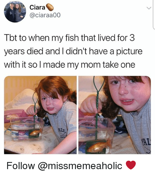 Ciara: Ciara  @ciaraa00  Tbt to when my fish that lived for 3  years died and I didn't have a picture  with it solmade my mom take one  ALE Follow @missmemeaholic ❤