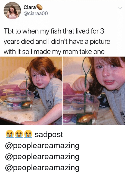 Ciara, Memes, and Tbt: Ciara  @ciaraa00  Tbt to when my fish that lived for 3  years died and I didn't have a picture  with it so l made my mom take one  ALE 😭😭😭 sadpost @peopleareamazing @peopleareamazing @peopleareamazing