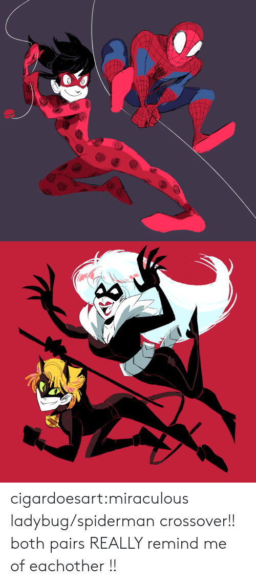 crossover: cigardoesart:miraculous ladybug/spiderman crossover!! both pairs REALLY remind me of eachother !!