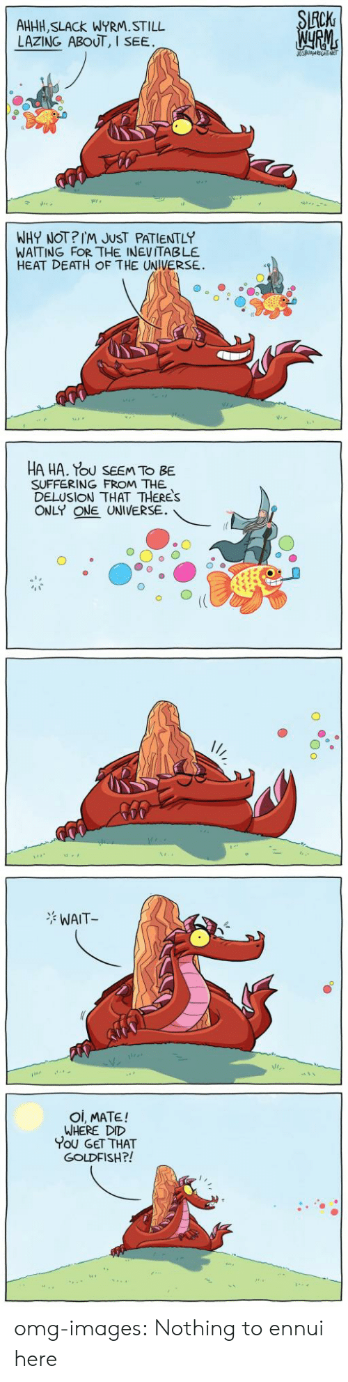 oi mate: CK  AHHH, SLACk WYRM.STILL  LAZING ABOUT, I  SEE  WHY NOT?IM JUST PATIENTLY  WAITING FOR THE INEVITABLE  HEAT DEATH OF THE UNIVERSE.  HA HA. Tou SEEM TO BE  SUFFERING FROM THE  DELUSION THAT THERES  ONLY ONE UNIVERSE.  WAIT  Oi, MATE!  WHERE DID  You GET THAT  GOLDFISH?! omg-images:  Nothing to ennui here