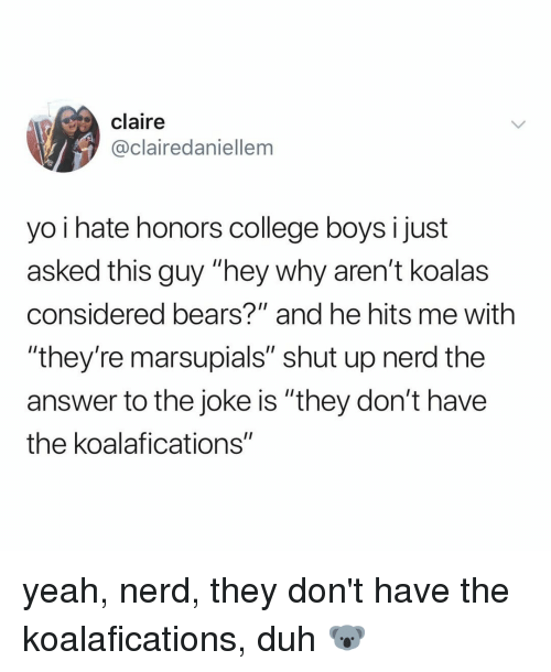 """College, Nerd, and Shut Up: claire  @clairedaniellem  yo i hate honors college boys I just  asked this guy """"hey why aren't koalas  considered bears?"""" and he hits me with  """"they're marsupials"""" shut up nerd the  answer to the joke is """"they don't have  the koalafications"""" yeah, nerd, they don't have the koalafications, duh 🐨"""
