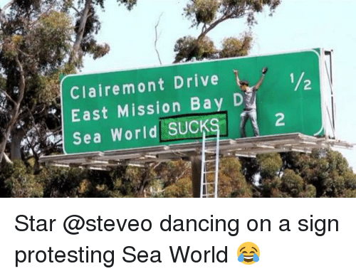 steveo: Claire mont Drive  D  East Mission Bay 1/2  Sea World SUCK  2 Star @steveo dancing on a sign protesting Sea World 😂