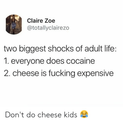 Fucking, Life, and Memes: Claire Zoe  @totallyclairezo  two biggest shocks of adult life:  1. everyone does cocaine  2. cheese is fucking expensive Don't do cheese kids 😂