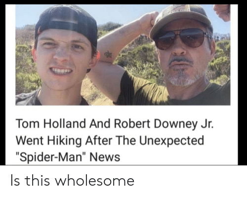 "Downey: CLALGHT  Tom Holland And Robert Downey Jr.  Went Hiking After The Unexpected  ""Spider-Man"" News Is this wholesome"