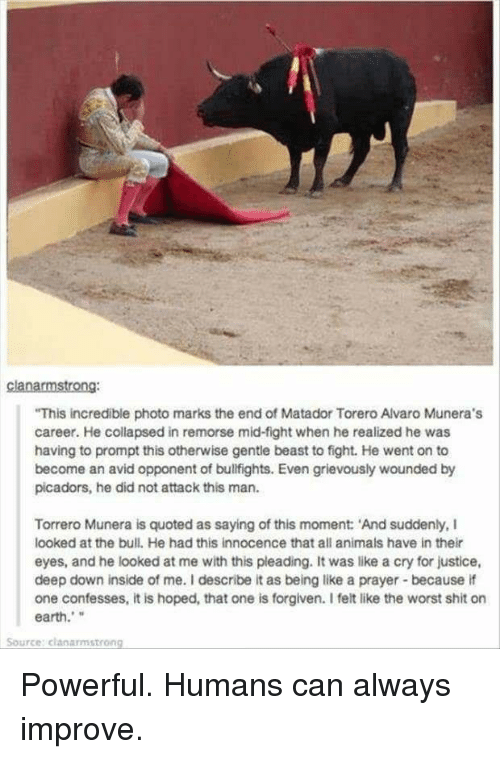 """quoted: clanarmstrong:  This incredible photo marks the end of Matador Torero Alvaro Munera's  career. He collapsed in remorse mid-fight when he realized he was  having to prompt this otherwise gentle beast to fight. He went on to  become an avid opponent of bulfights. Even grievously wounded by  picadors, he did not attack this man.  Torrero Munera is quoted as saying of this moment: 'And suddenly, I  looked at the bull. He had this innocence that all animals have in their  eyes, and he looked at me with this pleading. It was like a cry for justice,  deep down inside of me. I describe it as being like a prayer because if  one confesses, it is hoped, that one is forgiven. I felt like the worst shit on  earth.""""  Source: clanarmstrong <p>Powerful. Humans can always improve.</p>"""