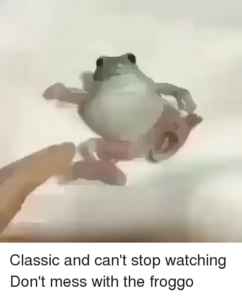 Funny, Mess, and Stop: Classic and can't stop watching Don't mess with the froggo