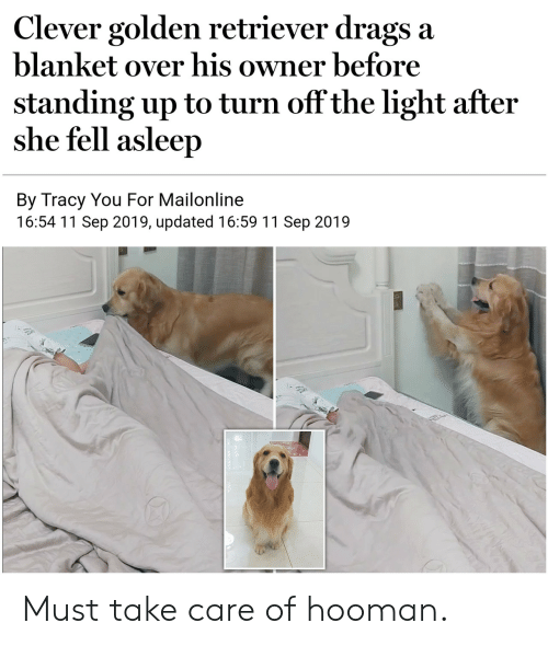 Hooman: Clever golden retriever drags a  blanket over his owner before  standing up to turn off the light after  she fell asleep  By Tracy You For Mailonline  16:54 11 Sep 2019, updated 16:59 11 Sep 2019 Must take care of hooman.