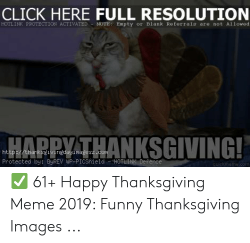 Click, Funny, and Meme: CLICK HERE FULL RESOLUTION  HOTLINK PROTECTION ACTIVATED NOTE: Empty or Blank Re ferrals are not Allowed.  HARPY THANKSGIVING!  http://thanksgivingdayimagesz.com  Protected by: ByREV WP-PICShield HOTLINK Defence  quickmemecom ✅ 61+ Happy Thanksgiving Meme 2019: Funny Thanksgiving Images ...