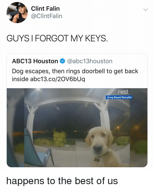 Memes, Abc13, and Best: Clint Falin  @ClintFalin  GUYS I FORGOT MY KEYS  ABC13 Houston @abc13houston  Dog escapes, then rings doorbell to get back  inside abc13.co/2OV6bUq  nest  Greg Basel/Storyful happens to the best of us