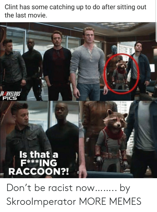 sitting out: Clint has some catching up to do after sitting out  the last movie.  RVELOUS  PICS  Is that a  F***ING  RACCOON?! Don't be racist now…….. by SkrooImperator MORE MEMES