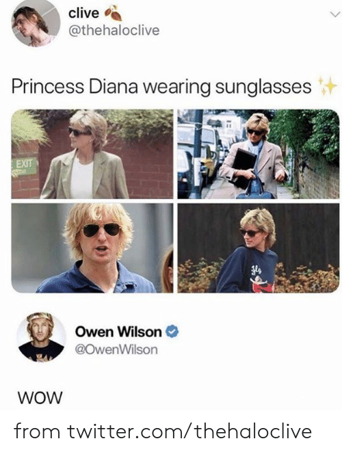 Dank, Twitter, and Wow: clive  @thehaloclive  Princess Diana wearing sunglasses  EXIT  Owen Wilson  @OwenWilson  WOW from twitter.com/thehaloclive