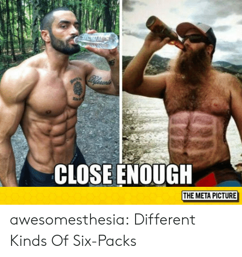 Tumblr, Blog, and Com: CLOSE ENOUGH  THE META PICTURE awesomesthesia:  Different Kinds Of Six-Packs