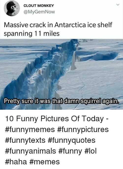 Funny, Lol, and Memes: CLOUT MONKEY  @MyGemNow  Massive crack in Antarctica ice shelf  spanning 11 miles  Pretty sure it was that damn squirrel egaftn 10 Funny Pictures Of Today - #funnymemes #funnypictures #funnytexts #funnyquotes #funnyanimals #funny #lol #haha #memes