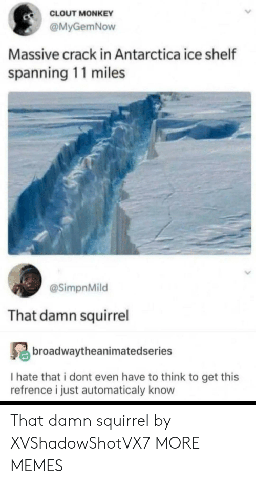 Dank, Memes, and Target: CLOUT MONKEY  @MyGemNow  Massive crack in Antarctica ice shelf  spanning 11 miles  @SimpnMild  That damn squirrel  broadwaytheanimatedseries  I hate that i dont even have to think to get this  refrence i just automaticaly know That damn squirrel by XVShadowShotVX7 MORE MEMES
