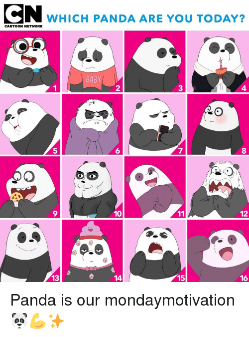 Memes, Panda, and Today: CN WHICH PANDA ARE YOU TODAY?  BABY  2  4  5  6  7  9  10  12  13  14  15  16 Panda is our mondaymotivation 🐼💪✨